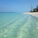 Waves of Sand - Bita Bay  by Amanda Diedrick