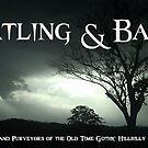 Watling & Bates Banner by WatlingBates
