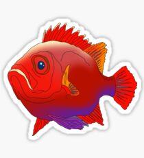 Fish perch ocean sea water aquarium fishing Sticker