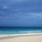 Ocean Blues  by Amanda Diedrick