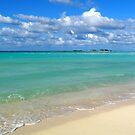 Breezy Day at Gillam Bay  by Amanda Diedrick