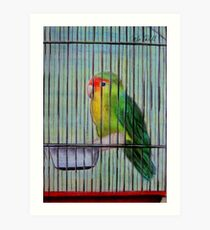 Bird in a Cage Art Print