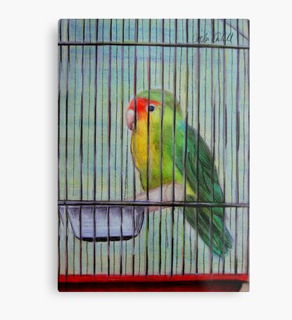 Bird in a Cage Metal Print