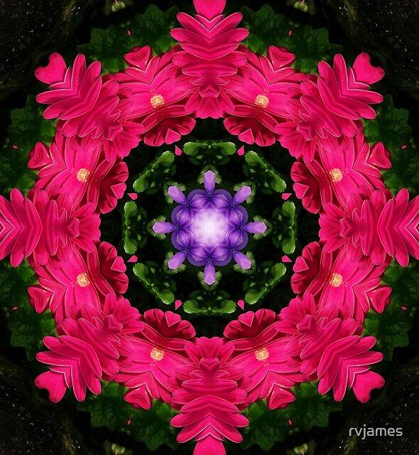 Hot Pink Gerbera And Cool Blue Viola Kaleidoscope by rvjames