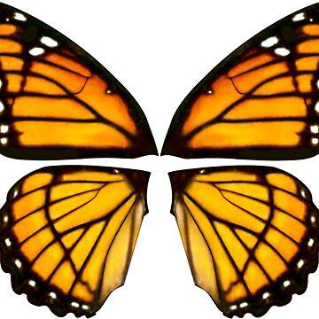 Butter wings by LeirumArt