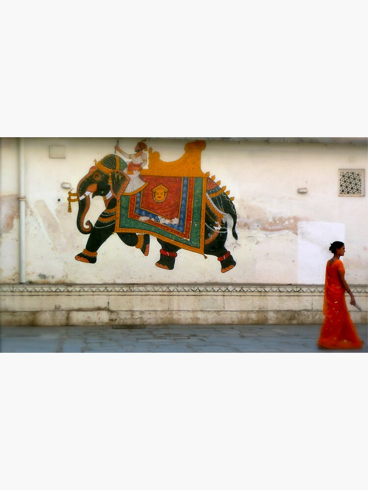 the elephant on the wall by handheld-films