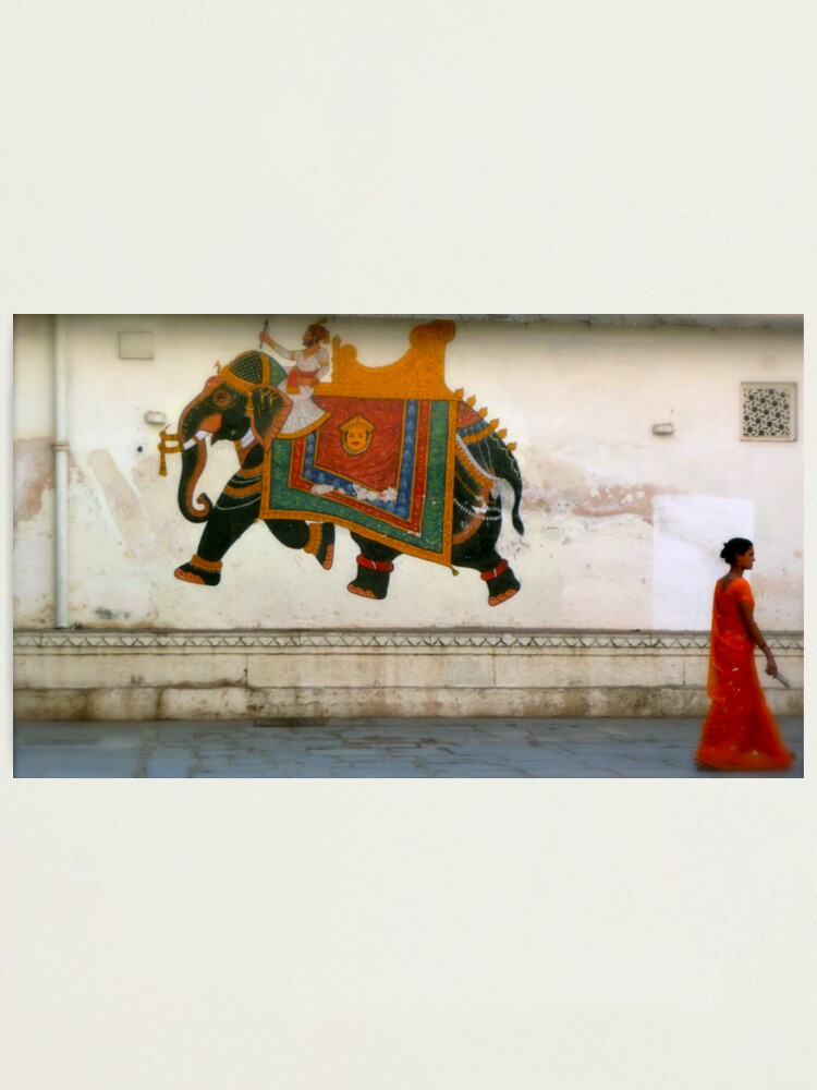 Alternate view of the elephant on the wall Photographic Print