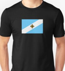 Flag of Madison, Wisconsin  T-Shirt