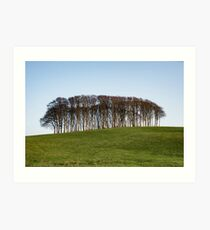 Nearly Home Trees,Cookworthy Knapp Art Print