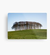 Nearly Home Trees,Cookworthy Knapp Metal Print