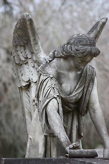 M'ange de le lux by Patricia Maulding