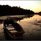 Boat by dominikanac