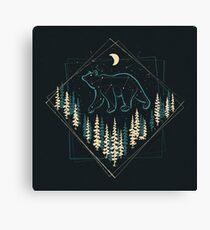 Lienzo El oso salvaje del cielo