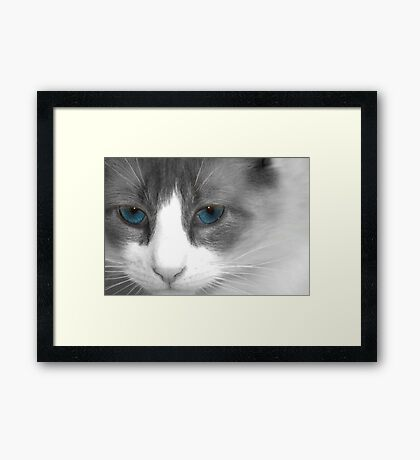 just call me kitty Framed Print
