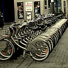 Bicycles for two, three, four...or more! by triciamary