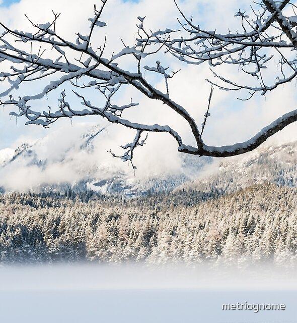 Mountains Beyond by metriognome