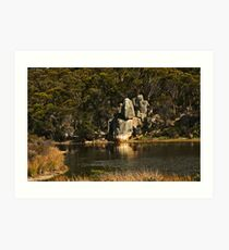 Lagoon Reflections Art Print