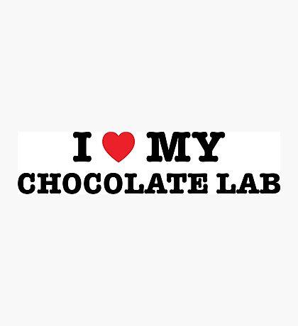 I Heart My Chocolate Lab Photographic Print