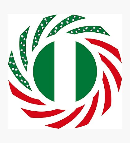 Nigerian American Multinational Patriot Flag Series Photographic Print