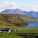 Gesto Farm  and The  Cuillins by Alexander Mcrobbie-Munro