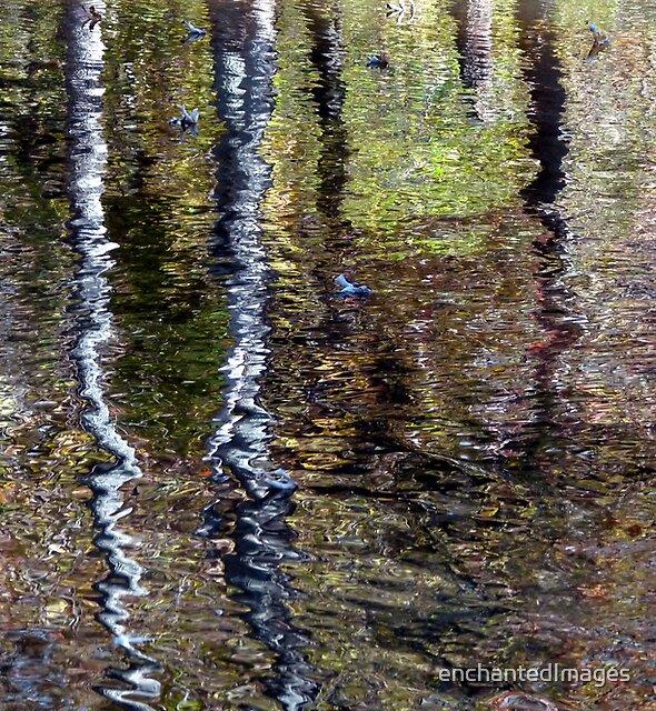 Impressionist Reflection by enchantedImages