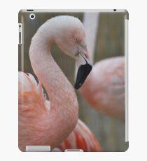 Flamingo iPad Case/Skin