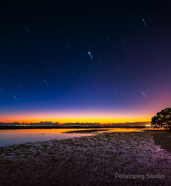 Nudgee Winter Sunrise by Potatopug Studio