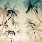 Hawaii Palms by Shari Mattox-Sherriff