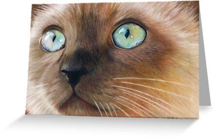Turquoise Eyes by Karen  Hull