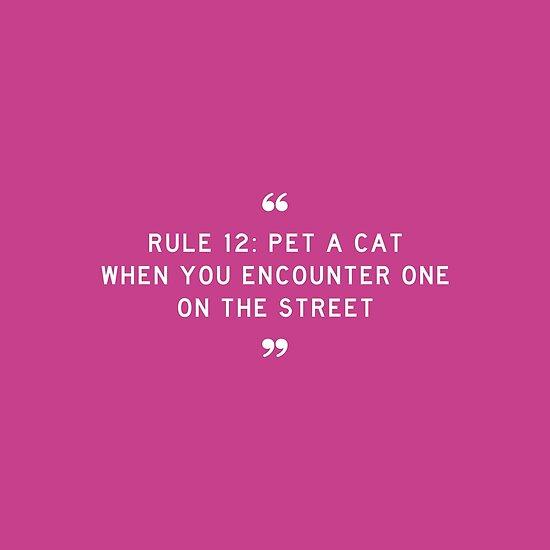 REGEL 12: Streiche eine Katze, wenn du einer auf der Straße begegnest von boxsmash