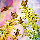 BUTTERFLY GATHERING by Tammera