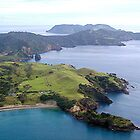 Palmer's Point and surrounds......Great Barrier Island.......!! by Roy  Massicks