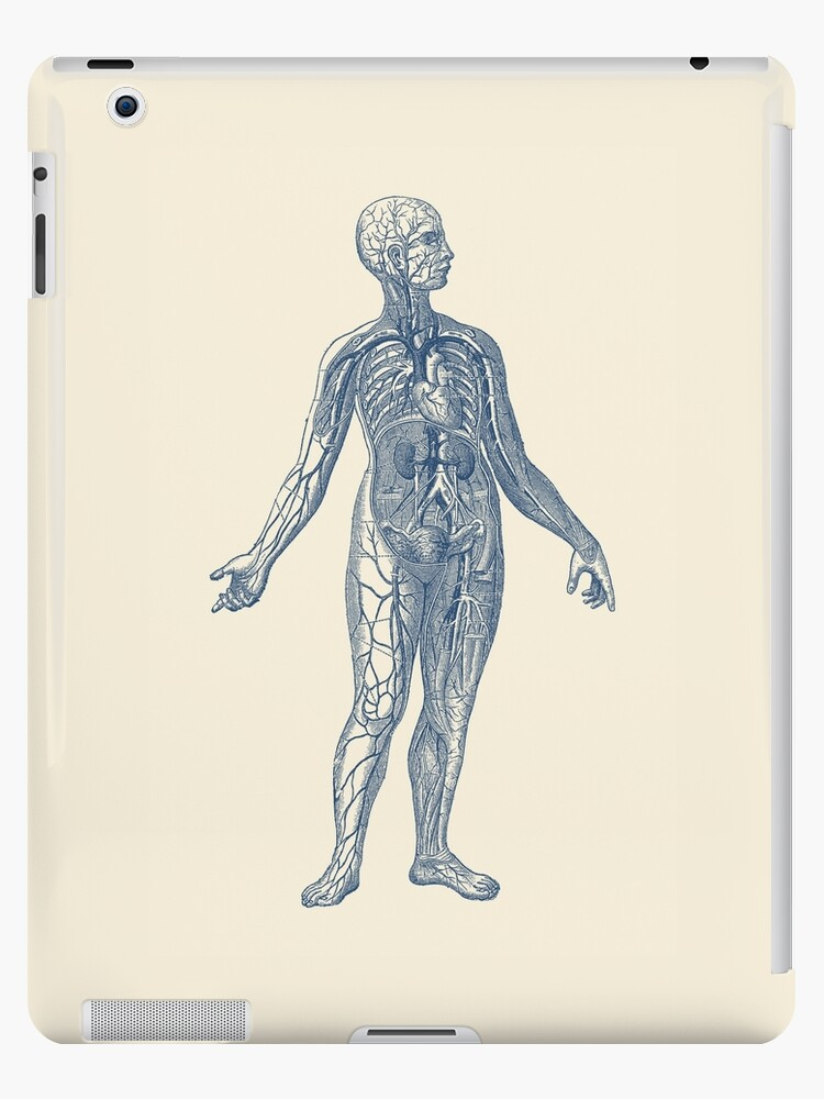 Venous System Diagram Vintage Anatomy Ipad Cases Skins By