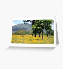 Hello Yellow Greeting Card