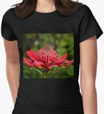 Waratah - A Symbol of Australia in Spring Women's Fitted T-Shirt