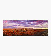 Settler's Ruin, Flinders Ranges, South Australia Photographic Print