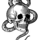 Skull with snake (Black&White) by stieven