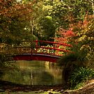 Red Bridge by Belinda Osgood