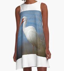 Ibis Portrait A-Line Dress