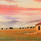 Burra Homestead, South Australia by Michael Boniwell