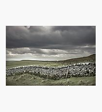 Stone wall on british countryside Photographic Print