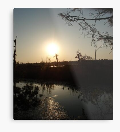 Sunset with Coot, March, 2009 Metal Print