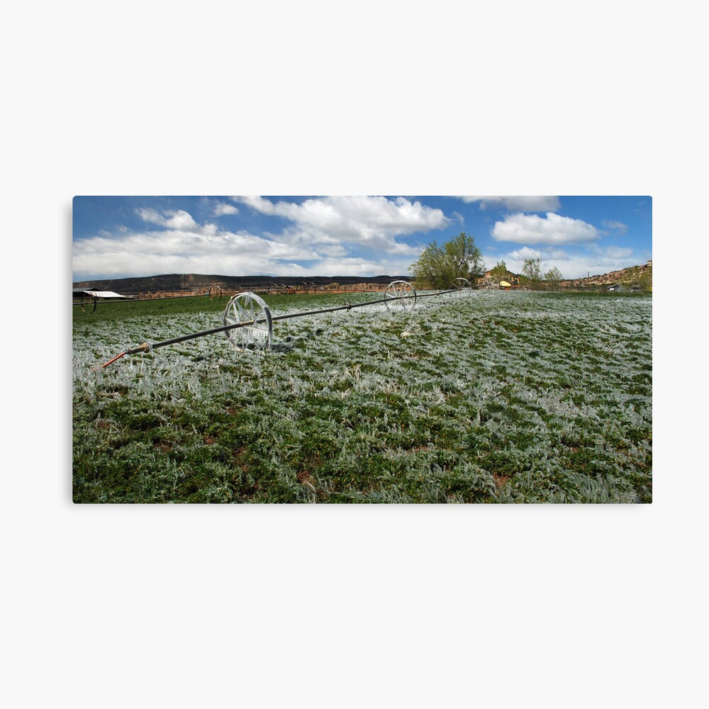 Spring green and white Canvas Print