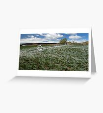 Spring green and white Greeting Card