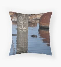 Sealion swimming near shore Throw Pillow