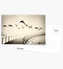 Wild geese Postcards
