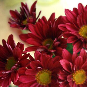 Fall Flowers by AuntDot