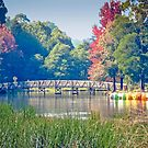 Emerald Lake Autumn by TonyCrehan