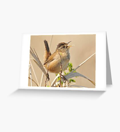 Tuning Up for Spring Greeting Card