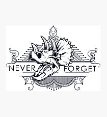 Never Forget The Dinosaurs Photographic Print